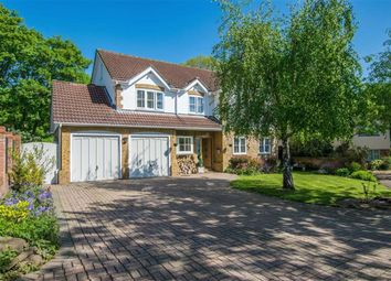 Thumbnail 6 bed detached house for sale in White House Close, Watton At Stone, Hertfordshire