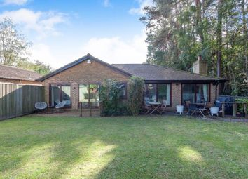 Thumbnail 4 bed bungalow for sale in Spring Gardens, Copthorne, West Sussex, Copthorne