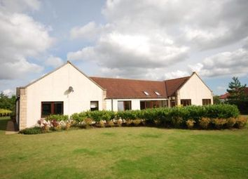 Thumbnail 5 bed detached house to rent in Falaise, 29 Forgan Drive, Drumoig, Fife