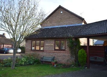 Thumbnail 4 bed property to rent in Burgoynes Farm Close, Impington, Cambridge