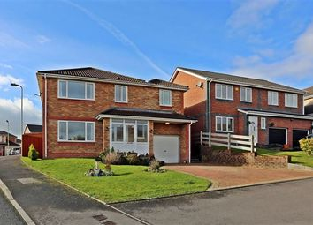 Thumbnail 5 bed detached house for sale in Clos Y Carw, Llantwit Fardre, Pontypridd