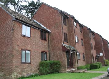 Thumbnail Studio for sale in The Hawthorns, Marlow Road, Bishops Waltham, Southampton