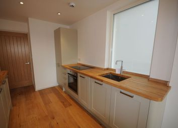 Thumbnail 2 bed flat to rent in Ivory Place, Brighton, East Sussex
