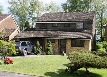 Thumbnail 4 bed detached house to rent in Costells Edge, Scaynes Hill