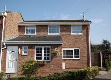 Thumbnail 4 bedroom link-detached house for sale in Daffodil Way, Chelmsford, Essex