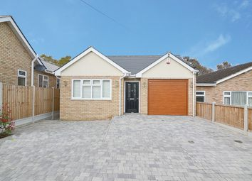 Thumbnail 3 bed detached bungalow to rent in Highams Road, Hockley