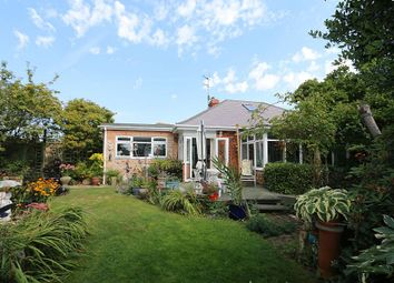 Thumbnail 3 bed bungalow for sale in Ferringham Lane, Ferring, Worthing, West Sussex
