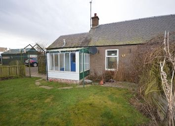 Thumbnail 3 bed semi-detached house to rent in Coupar Angus, Blairgowrie