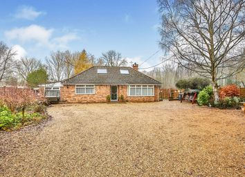 Thumbnail 3 bed detached bungalow for sale in Swaffham Road, South Raynham, Fakenham