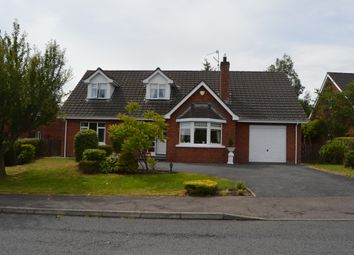 Thumbnail 4 bed detached house for sale in Dunbrae, Newry