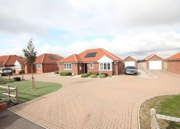 Thumbnail 3 bed bungalow for sale in Holland Road, Little Clacton, Clacton-On-Sea