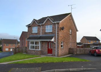 Thumbnail 4 bedroom detached house for sale in 41, Coolnagard Grove, Omagh