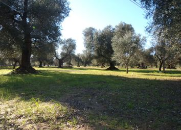 Thumbnail Land for sale in Via Brindisi, Carovigno, Brindisi, Puglia, Italy