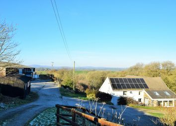 Thumbnail 4 bed equestrian property for sale in Tavernspite, Whitland