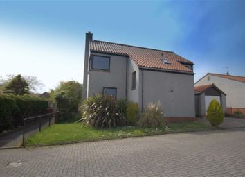 Thumbnail 4 bedroom detached house to rent in Lords Mount, Berwick-Upon-Tweed