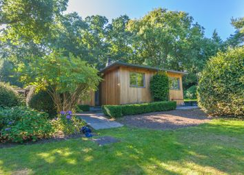 Thumbnail 3 bed detached bungalow to rent in Old Barn Lane, Churt, Farnham