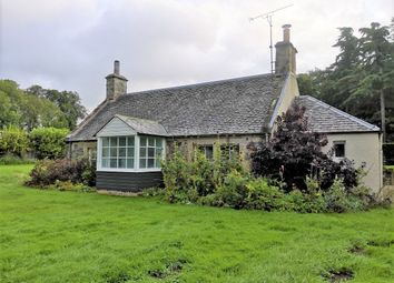 Thumbnail 3 bed detached house to rent in Ladybank, Cupar