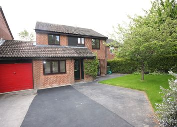 Thumbnail 4 bed link-detached house to rent in Falcon View, Winchester