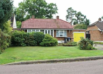 Thumbnail 2 bed detached bungalow for sale in Chestnut Walk, Welwyn, Welwyn, Hertfordshire