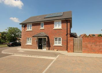 Thumbnail 3 bed detached house to rent in Penrith Crescent, Wickford
