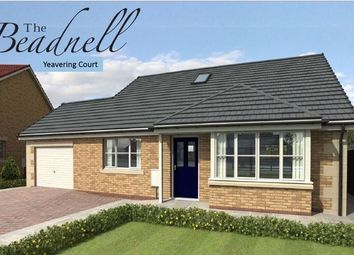 Thumbnail Detached house for sale in Belford, Yeavering Court, The Beadnell, Plot 45