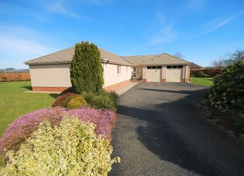 Thumbnail 4 bedroom detached bungalow for sale in Marlefield Grove, Tibbermore Perth