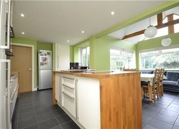 Thumbnail 4 bed detached house to rent in Stockwell Lane, Woodmancote, Cheltenham