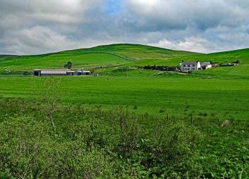 Thumbnail Farm for sale in Tundergarth, Lockerbie