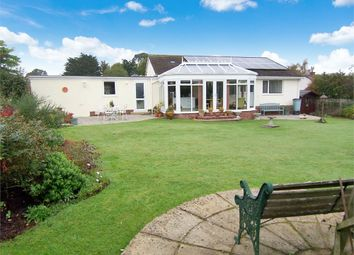 Thumbnail 3 bed detached bungalow for sale in Colyford, Colyton, Devon