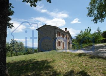 Thumbnail 3 bed farmhouse for sale in Casale Degli Olivi, Caprese Michelangelo, Arezzo, Tuscany, Italy