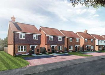 Thumbnail Detached house for sale in Amlets Place, Amlets Lane, Cranleigh, Surrey