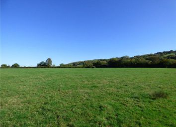Thumbnail Land for sale in Ibberton, Blandford Forum, Dorset