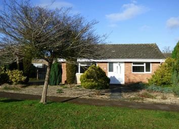 Thumbnail 3 bed detached bungalow to rent in The Beeches, Upton-Upon-Severn, Worcester