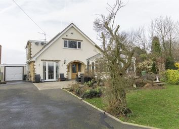 Thumbnail 5 bedroom detached bungalow for sale in Morton Road, Pilsley, Chesterfield