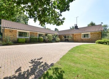 Thumbnail 4 bed detached bungalow for sale in Coopers Green, Uckfield, East Sussex