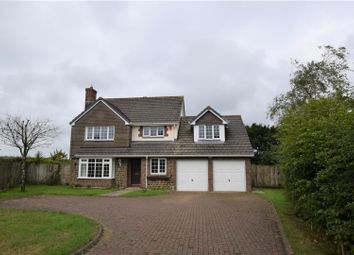Thumbnail 5 bed detached house for sale in Highfield Close, High Bickington, Umberleigh