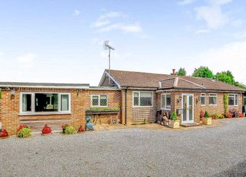 Thumbnail 4 bed bungalow for sale in Oak Lodge, Valuation Lane, Boroughbridge