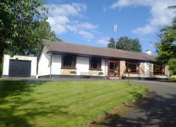 Thumbnail 4 bed bungalow for sale in Lugnagon, Newtowngore, Leitrim