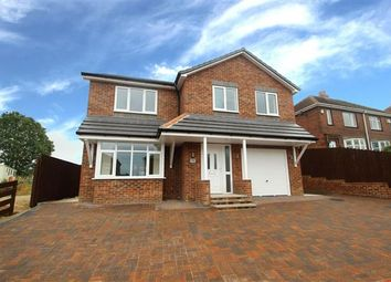 Thumbnail 4 bed detached house for sale in Cow Lane, Havercroft, Wakefield