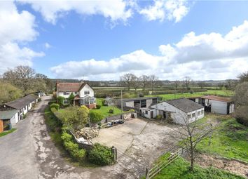 Thumbnail 5 bedroom equestrian property for sale in Charlton Musgrove, Wincanton, Somerset