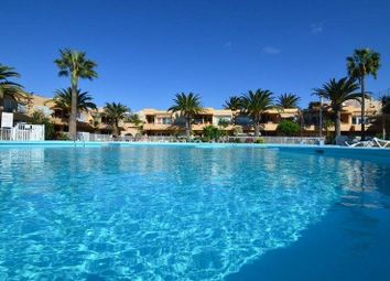 Thumbnail 1 bed apartment for sale in 35660 Corralejo, Las Palmas, Spain