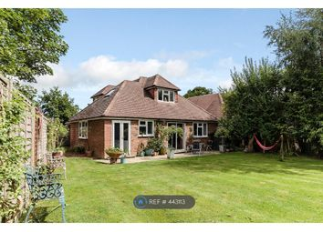 Thumbnail 5 bed bungalow to rent in Horsham Road, Dorking
