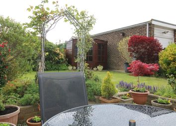 Thumbnail 2 bed bungalow for sale in Heron Close, Eastbourne