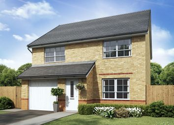 "Thumbnail 4 bed detached house for sale in ""Kennford"" at Lukes Lane, Hebburn"