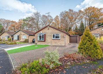 3 bed detached bungalow for sale in Spring Gardens, Copthorne, Crawley RH10