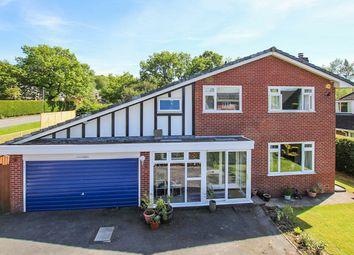 Thumbnail 4 bed detached house for sale in Cefn Morfa, Llandrindod Wells