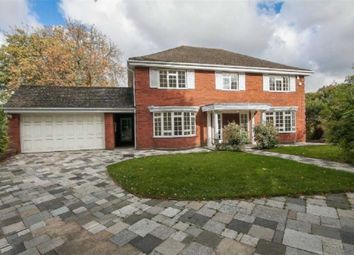 Thumbnail 5 bedroom detached house to rent in Georges Mead, Elstree, Borehamwood