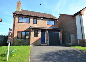 Thumbnail 5 bed detached house for sale in The Limes, Motcombe, Shaftesbury