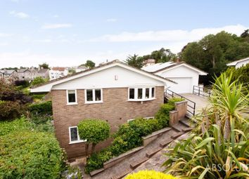 4 bed detached house for sale in Den Brook Close, Torquay TQ1
