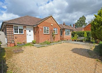 Thumbnail 3 bed detached bungalow for sale in Holybourne Village Centre, Alton, Hampshire